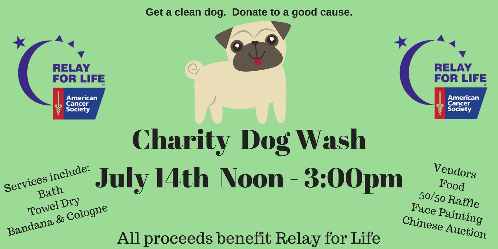 Charity Dog Wash: Details!