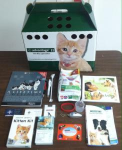 kitten kits